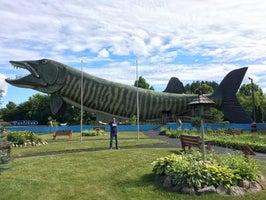 Fresh Water Fishing Hall of Fame & Museum