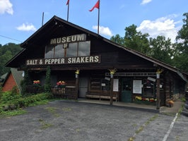Salt & Pepper Shaker Museum