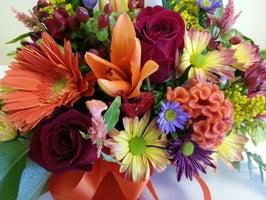Gainesville Flower