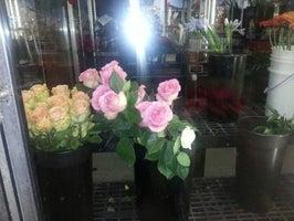 Villere's Florist