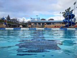 San Ramon Olympic Pool And Aquatic Center Prices Photos Reviews San Ramon Ca