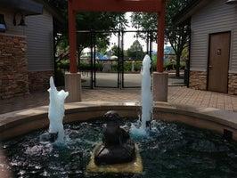 Sea Lion Aquatic Park