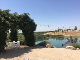 Graveyard Vineyards