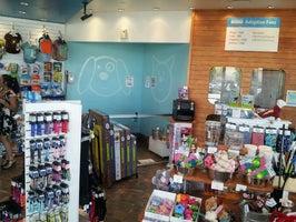 Adopt & Shop