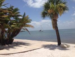 Island Boat Adventures- Calypso Cat