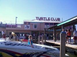 Lance's Turtle Club