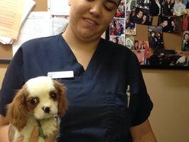 Mohnacky Animal Hospital Carlsbad