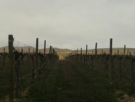 Portteus Vineyards and Winery
