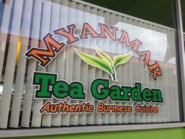 Myanmar Tea Garden