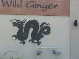 Wild Ginger China Bistro