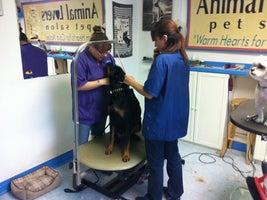 Animal Lovers Pet Salon