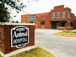 McKinney Animal Hospital