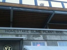 Slime Plant Bar & Lounge