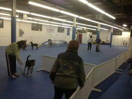 Kellars Canine Academy