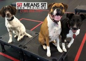 Sit Means Sit Longmont-Firestone