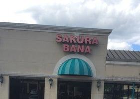 Sakura Bana