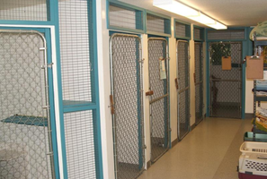 Firgrove Veterinary Hospital