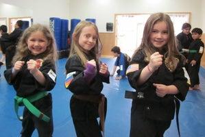 Villari's Martial Arts Center