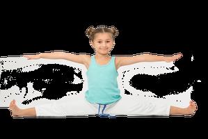 Rettig's Gymnastics Training Center Inc.