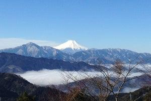 高尾山 山頂