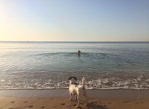 Пляж «ЮРАЯ»