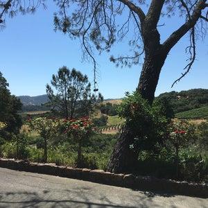 Photo of The Kuleto Estate Winery