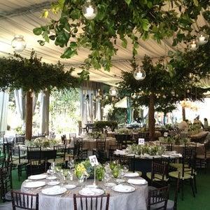 Lists featuring jardin versal for Jardin versal