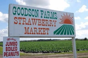 Goodson Farms, Inc. - Produce Market