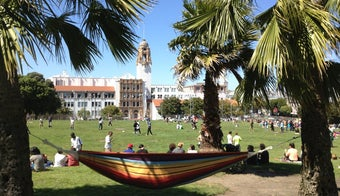 The 15 Best Places for Picnics in San Francisco