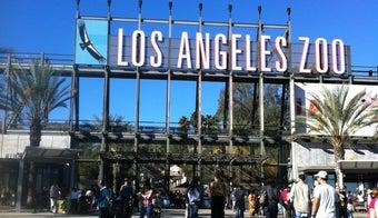The 7 Best Zoos in Los Angeles
