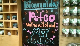 The 15 Best Places for Pets in Mexico City