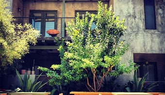 The 13 Best Places for a Courtyard in Austin