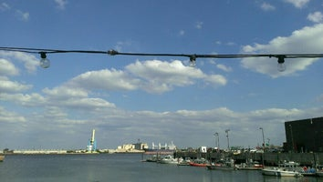 Shank's Original Pier 40