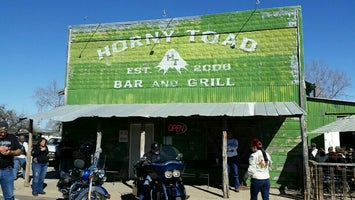 Horny Toad Bar & Grill