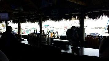 Dolphin Tiki Bar & Cafe