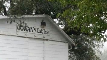 Gowan's Oak Tree
