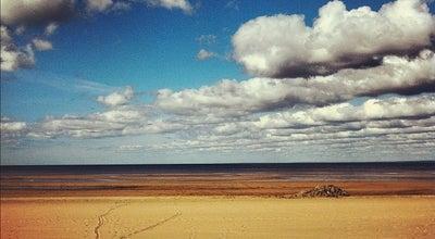 Photo of Beach Пляж «Сестрорецкий» at Пляжная Ул., Sestroretsk 197706, Russia