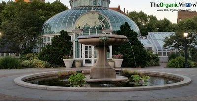 Photo of Other Venue The Palm House at 1000 Washington Ave, Brooklyn, NY 11225