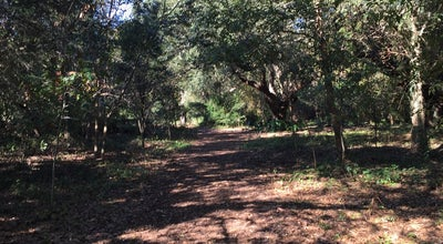 Photo of Trail Couturie Forest at 1009 Harrison Ave, New Orleans, LA 70124, United States