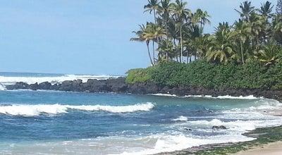 Photo of Beach Haleiwa Beach Park at 62-449 Kamehameha Highway, Haleiwa, HI 96712, United States