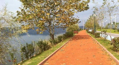 Photo of Trail Sapanca Sahili Yürüyüs Yolu at Turkey