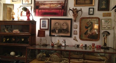 Photo of Art Gallery Morbid Anatomy Library at 543 Union St, Brooklyn, NY 11215, United States
