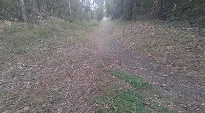 Photo of Trail West Ashley Greenway at Carolina Bay Road, Charleston, SC 29414, United States