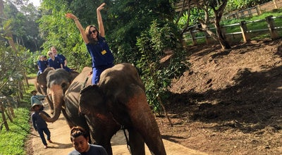 Photo of Theme Park Baanchang Elephant Park at 147/1 Rachadamnoen Rd., Muang Chiangmai 50200, Thailand
