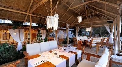 Photo of Mediterranean Restaurant Laganini Lounge bar & Fish House at Palmizana, Hvar Island 21450, Croatia