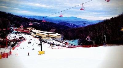 Photo of Tourist Attraction Ober Gatlinburg's Ski Mountain Coaster at 1339 Ski Mountain Rd, Gatlinburg, TN 37738, United States