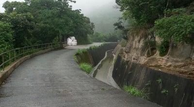 Photo of Trail Wilson Trail (Section 5) 衛奕信徑(第五段) at Hung Mui Kuk, New Territories, Hong Kong