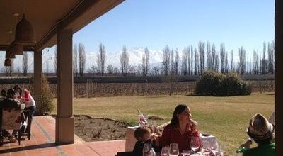 Photo of Winery Dominio del Plata Winery at Cochabamba 7801, Agrelo 5509, Argentina