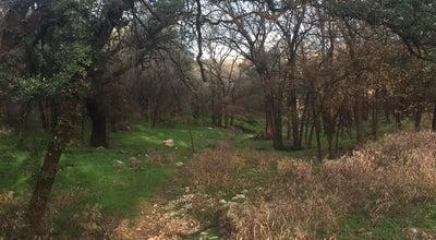 Photo of Trail Purgatory Creek Park at 102 Wonder World Dr, San Marcos, TX 78666, United States