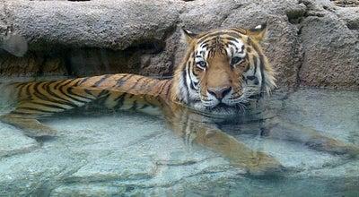 Photo of Zoo Utah's Hogle Zoo at 2600 East Sunnyside Ave., Salt Lake City, UT 84108, United States